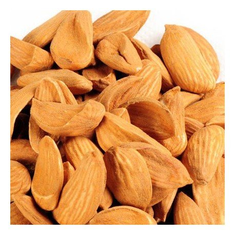 Almond (Mamra)