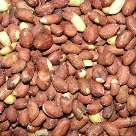 Groundnut (Roasted)