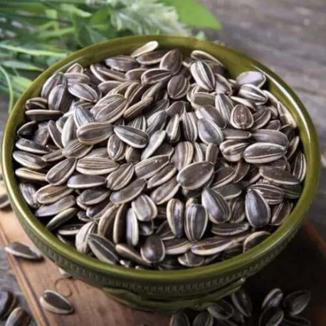 Sunflower seeds with shells