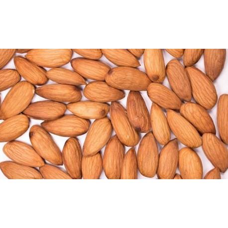 Almond (Sonora)