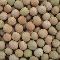 Peas (White)