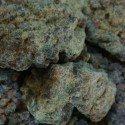 Asafoetida - Hing (Powder)