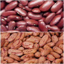 Rajma(Kidney Beans)